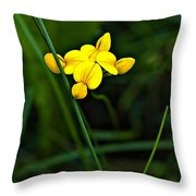 Bird's-foot Trefoil Throw Pillow