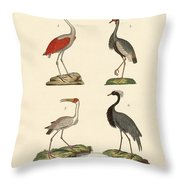 Birds From Hot Countries Throw Pillow