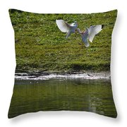 Birds In Fight Throw Pillow