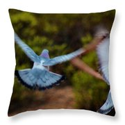 Birds In Flight 030515ab Throw Pillow