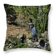 Birds In Florida Throw Pillow