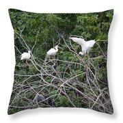 Birds In The Brush Throw Pillow