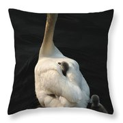 Birds Of A Feather Stick Together Throw Pillow by Bob Christopher
