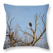 Birds Of Prey II Throw Pillow