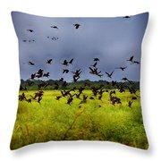 Birds Of The Wetlands V11 Throw Pillow