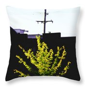 Birds On A Wire In Cooper Young Throw Pillow