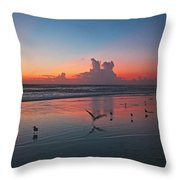 Birds On Beach Throw Pillow