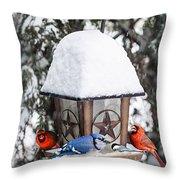 Birds On Bird Feeder In Winter Throw Pillow