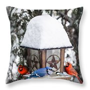 Birds On Bird Feeder In Winter Throw Pillow