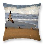 Birds On The Beach Throw Pillow
