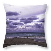 Birds On The Beach Throw Pillow