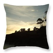 Birds Over Cliff Throw Pillow