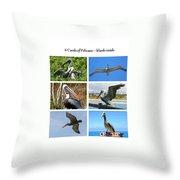 Birds - Pelicans - Boxed Cards Throw Pillow