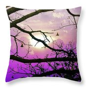 Birds Roosting For Night Throw Pillow