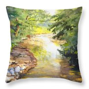 Bird's Trail Creek Throw Pillow