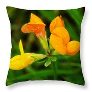 Birdsfoot Trefoil Throw Pillow