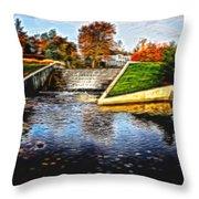 Birmingham Mi Waterfall Throw Pillow