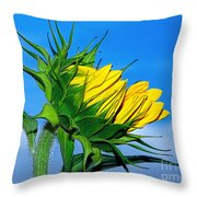 Birth Of A Sunflower By Kaye Menner Throw Pillow