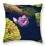 Birth Of A Venus Throw Pillow