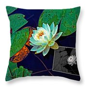 Birth Of An Image Throw Pillow