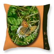 Birthday Greeting Card - American Copper Butterfly Throw Pillow