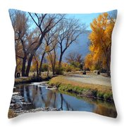 Bishop Creek Throw Pillow