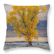 Bison And Cottonwood Throw Pillow