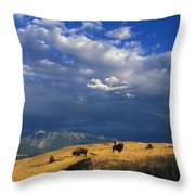 Bison Back From The Brink Throw Pillow