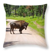 Bison Blocking The Road Throw Pillow