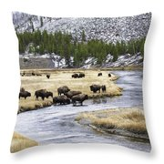 Bison By The Madison Throw Pillow