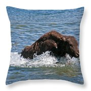 Bison Calf Running After Mama In Yellowstone National Park Throw Pillow