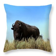 Bison Cow On An Overlook In Yellowstone National Park Throw Pillow