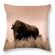 Bison Cow On An Overlook In Yellowstone National Park Sepia Throw Pillow