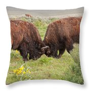 Bison Fight In Grand Teton National Park Throw Pillow