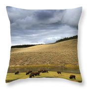 Bison Grazing Along The Yellowstone River In Hayden Valley Throw Pillow