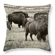 Bison Herd Bw Throw Pillow