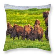 Bison Herd Grazing In Lamar Valley Throw Pillow