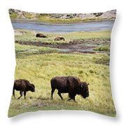 Bison Mother And Calf In Yellowstone National Park Throw Pillow