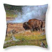 Bison Mud Throw Pillow