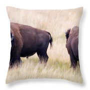 Bison Painting Throw Pillow