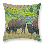 Bison Pair In Hayden Valley In Yellowstone National Park-wyoming  Throw Pillow