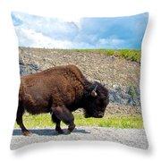 Bison Plodding Along On Alaska Highway-bc-canada Throw Pillow