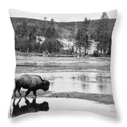 Bison Reflection Throw Pillow