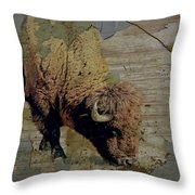 Bison Vintage Style -photo- Art Throw Pillow by Ann Powell