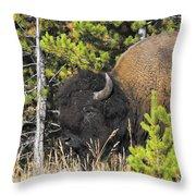 Bison's Portrait Throw Pillow