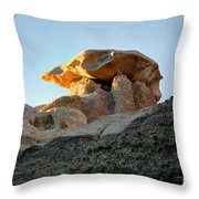 Bisti Land Form 2 Throw Pillow