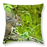 Bitter Meal Throw Pillow