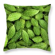 Bitter Melons Throw Pillow