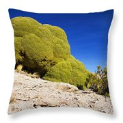 Bizarre Green Plant Bolivia Throw Pillow