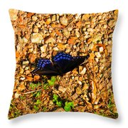 Black And Blue 2 Throw Pillow